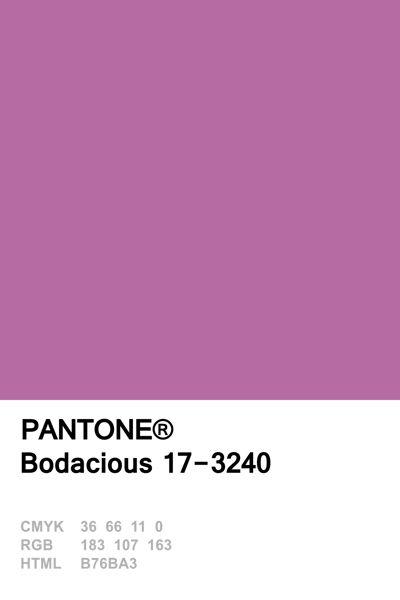 Bodacius
